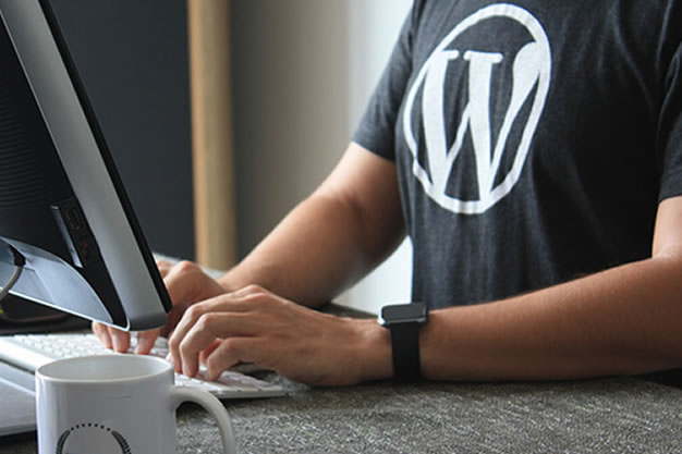 Suporte WordPress